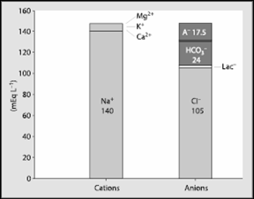anions vs cations