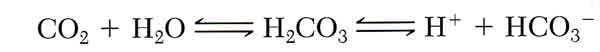 bicarbonate_equations