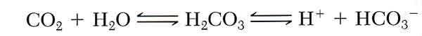 bicarbonate_equations
